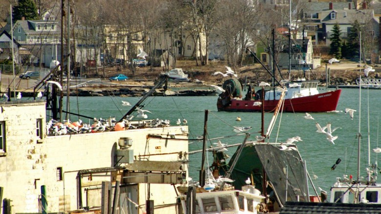New England Fishermen Fight Onerous Regulations