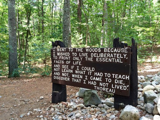 A message from Henry David Thereau at Walden Pond.