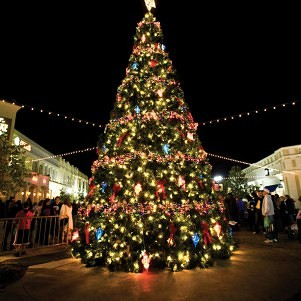 No 'Christmas' trees in New Hampshire