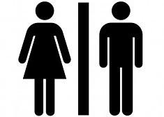 SexGender