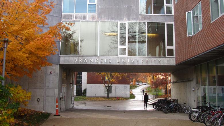 3. Brandeis University