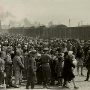 Psychiatry's Little-Known Role in Creating the Holocaust