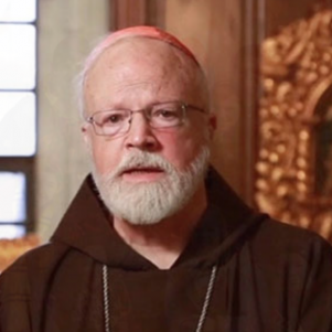 Cardinal O'Malley:  I Didn't Know About McCarrick