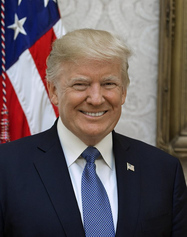 Donald Trump Photo — Straight On — Official Portrait — Saved Friday 1-11-2019