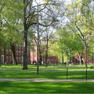 Tax Harvard?