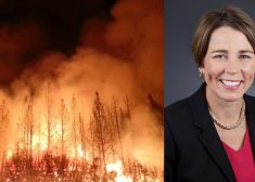 Maura Healey and Forest Fire Photo # 2 — Saved Wednesday 6-3-2020