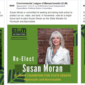 MassFiscal Says Two Environmentalist Groups Are Violating Campaign Finance Law In Massachusetts