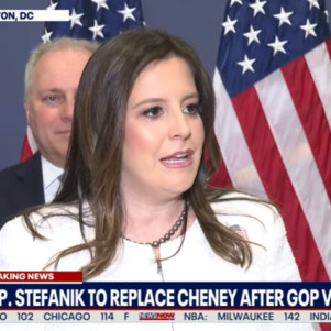 The GOP Can Do Better Than Elise Stefanik In Leadership