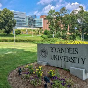 'Picnic,' 'Congressman,' and 'Walk-In' Constitute Oppressive Language, Brandeis University Says